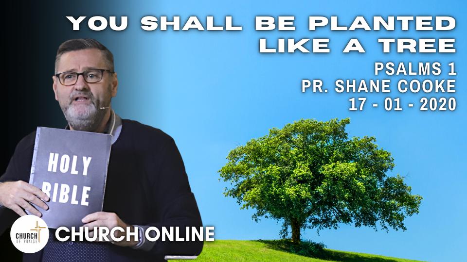 You Shall Be Planted Like A Tree | Pr. Shane Cooke | 17 - 01 -2021